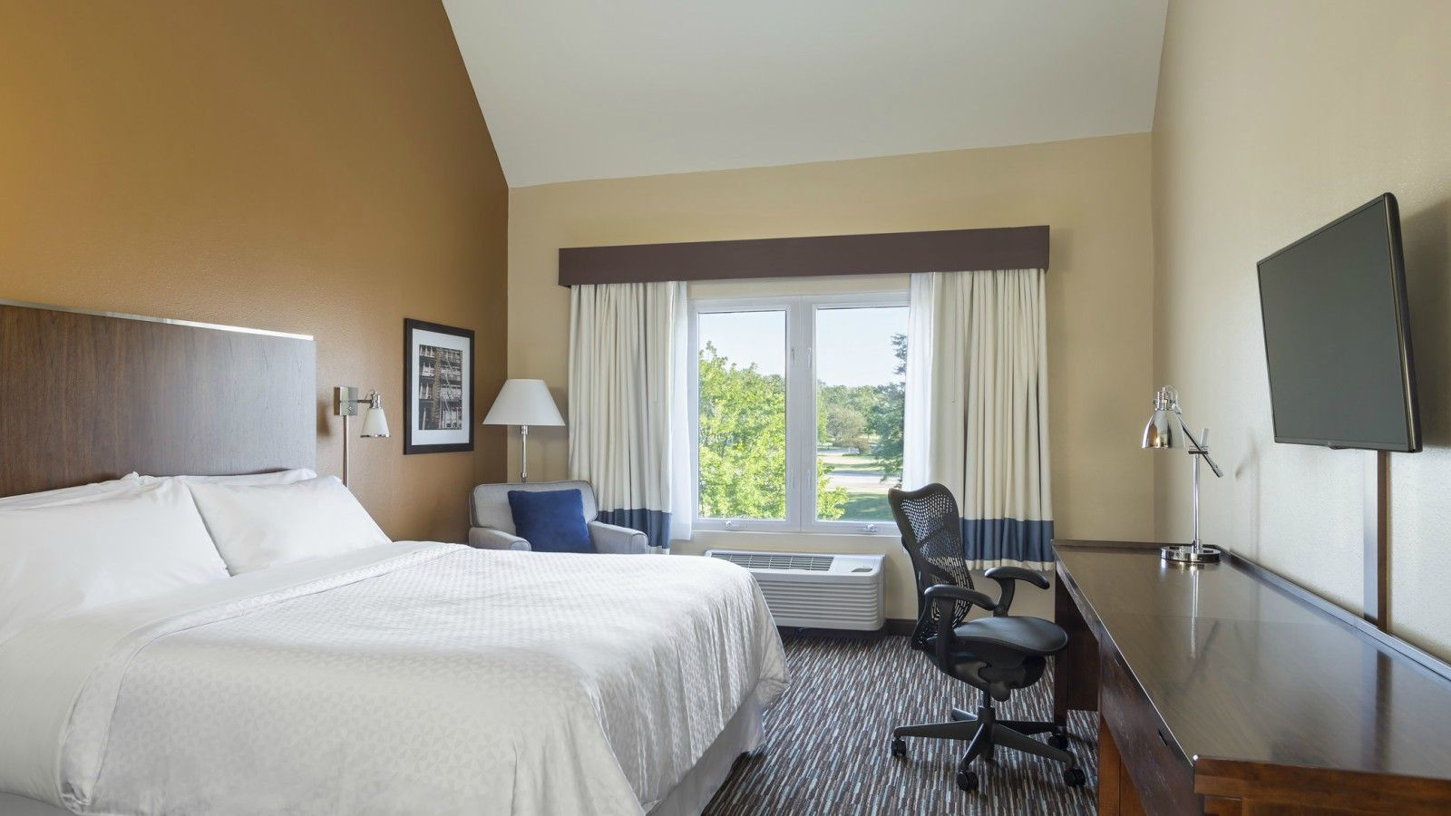 Buffalo Grove Accomodations - Deluxe Guestroom